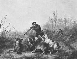 Caza del lobo. Grabado del s. XIX.