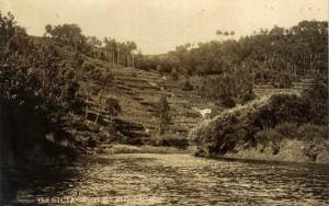 Los bancales que descienden hasta el río Mandeo. Foto Ferrer. Archivo del autor.