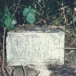 Una de las piezas encontradas durante la exploración.