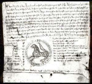 Privilegio rodado de Alfonso IX, otorgado en Valencia de Don Juan el 13 de febrero de 1219